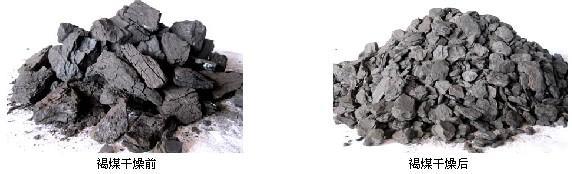 褐煤烘干前后物料对比